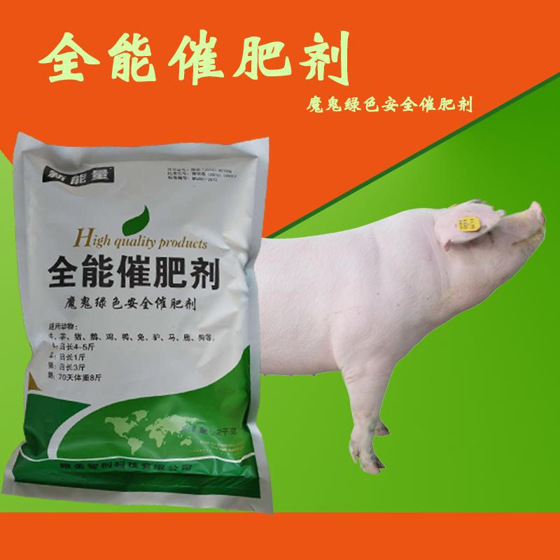 育肥�i催肥�┤臻L3斤